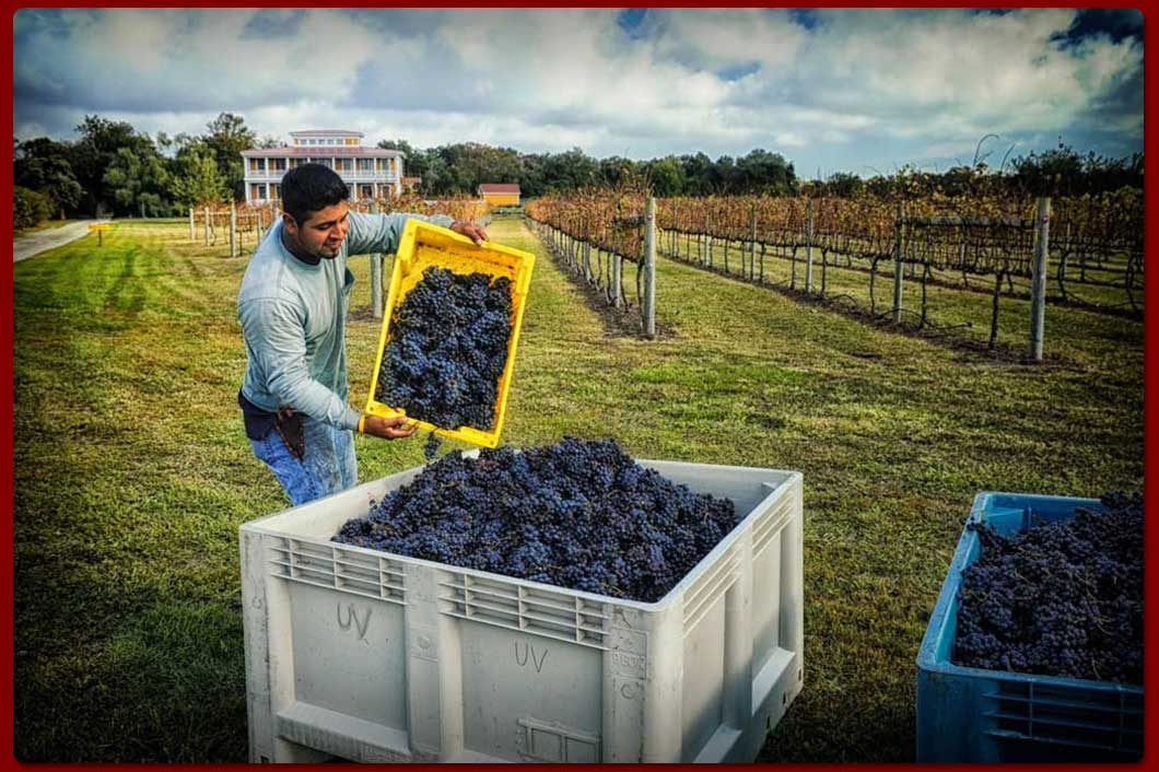WillowCreekIndexSlide2