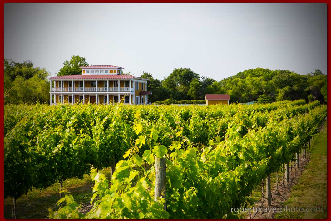 WillowCreekIndexSlide3