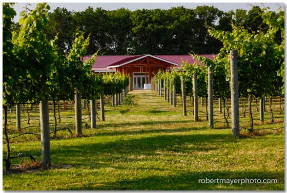 Willow Creek Winery, West Cape May